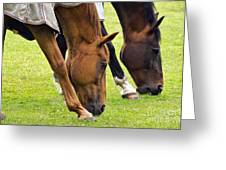 Grazing In Sync Greeting Card