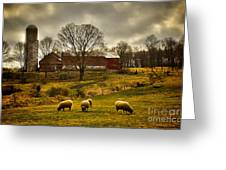 Grazing North South East And West Greeting Card