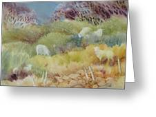 Grazing_in_the_grass Greeting Card