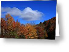 Great Balsam Mountains In The Fall Greeting Card