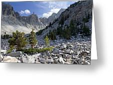 Great Basin National Park Greeting Card