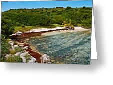 Great Bird Island Beach Greeting Card