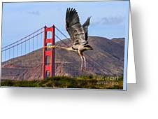 Great Blue At The Golden Gate Greeting Card