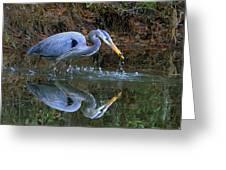Great Blue Heron #1 Greeting Card