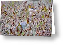Great Blue Heron In Fall Marsh Greeting Card