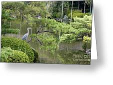 Great Blue Heron In Pond Kyoto Japan Greeting Card