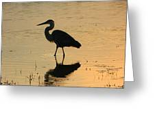 Great Blue Heron Reflected Greeting Card
