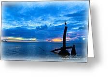 Great Blue Heron Sunrise Greeting Card