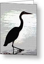 Great Blue Herons Nightside Greeting Card