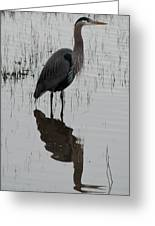 Great Blue Reflections Greeting Card