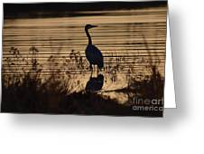 Great Blue Silhouette Greeting Card