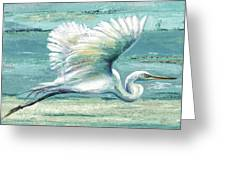 Great Egret I Greeting Card