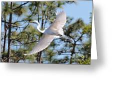 Great Egret Spirit Greeting Card