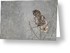 Great Grey Hunter Greeting Card
