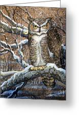 Great Horned Owl Another Storm Greeting Card