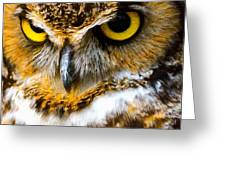Great Horned Owl  Greeting Card by Parker Cunningham