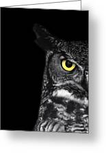 Great Horned Owl Photo Greeting Card