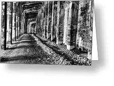 Great Northern Railroad Snow Shed - Black And White Greeting Card