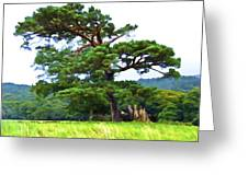 Great Pine Greeting Card
