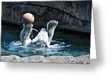 Great Polar Catch By Willie Greeting Card