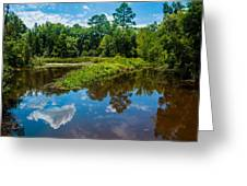 Great Reflections Greeting Card