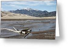 Great Sand Dunes Two Greeting Card