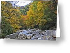 Great Smoky Mountains Creek 3 Greeting Card