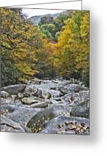 Great Smoky Mountains Creek 4 Greeting Card