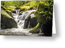 Great Smoky Mountains Tn Roaring Fork Motor Nature Trail Waterfall Greeting Card