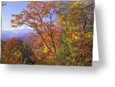 Great Smoky Mts From Blue Ridge Pkwy Greeting Card