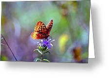 Great Spangled Fritillary Greeting Card