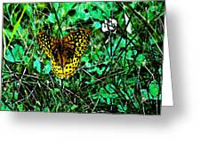 Great Spangled Fritillary Ins 49 Greeting Card