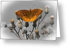 Great Spangled Fritillary Greeting Card