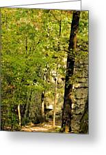 Great Wall Of Rock In Boulder Field Greeting Card