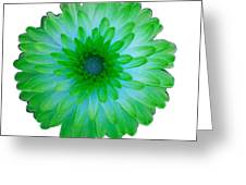 Green And Blue Dahlia Greeting Card
