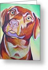 Green And Brown Dog Greeting Card