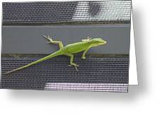 Green Anole Greeting Card