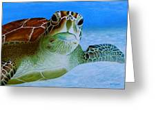 Green Back Turtle Greeting Card by David Hawkes