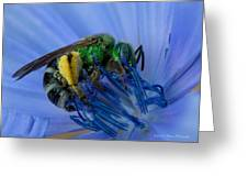 Green Bee Blue Moment Greeting Card
