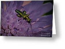Green Bug Greeting Card