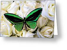 Green Butterfly On White Roses Greeting Card