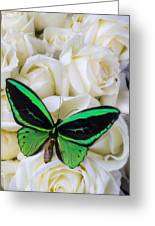Green Butterfly With White Roses Greeting Card