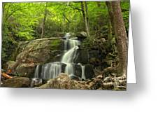 Green Canopy Above Laurel Falls Greeting Card
