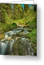 Green Colors And A Stream Hdr Greeting Card