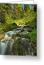 Green Colors And A Stream Greeting Card