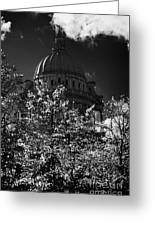 Green Copper Dome Of Belfast City Hall With Blue Cloudy Sky Behind Trees With Autumn Leaves Vertical Greeting Card