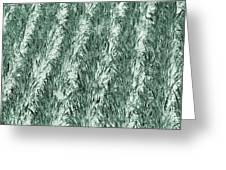 Green Cornfield Greeting Card