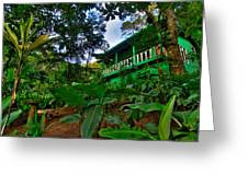 Green Costa Rica Paradise Greeting Card by Andres Leon