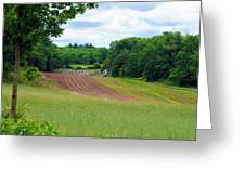 Green Crops Greeting Card by Kenneth Feliciano