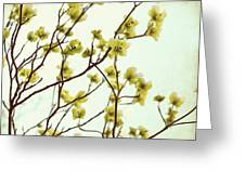 Green Dogwood Greeting Card